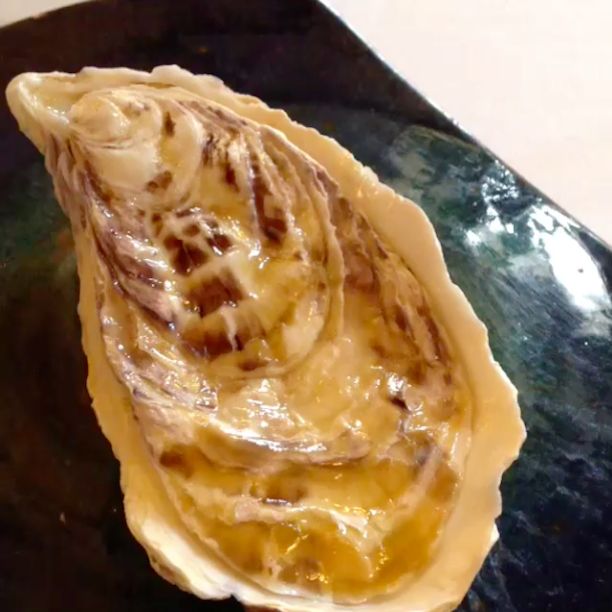 oyster with seaweed